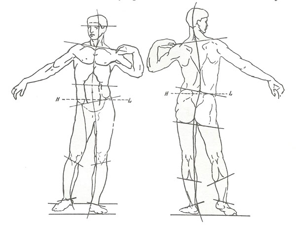 Зарисовки фигуры человека